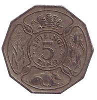 Монета 5 шиллингов. 1988 год, Танзания.