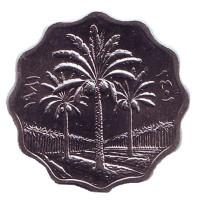 Пальмы. Монета 5 филсов. 1981 год, Ирак. UNC.