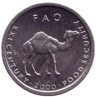 Верблюд. FAO. Монета 10 шиллингов. 2000 год, Сомали. UNC.