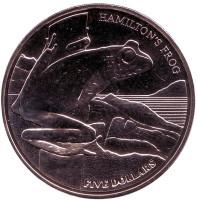 Лягушка Гамильтона. Монета 5 долларов. 2008 год, Новая Зеландия.