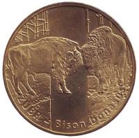 Животные мира - зубр (бизон). Монета 2 злотых, 2013 год, Польша.