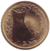 """Динго. Серия """"Детёныши диких животных"""". Монета 1 доллар. 2011 год, Австралия."""