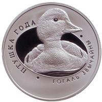 Обыкновенный гоголь. Монета 1 рубль. 2016 год, Беларусь.