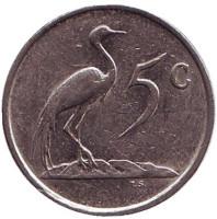 Африканская красавка. Монета 5 центов. 1984 год, Южная Африка.