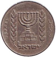 Менора (Семисвечник). Монета 1/2 лиры. 1963 год, Израиль.