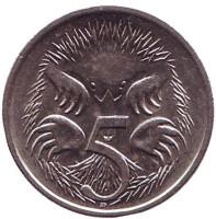 Ехидна. Монета 5 центов. 1992 год, Австралия.