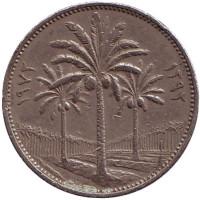 Пальмовые деревья. Монета 50 филсов. 1972 год. Ирак.
