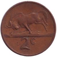 Белохвостый гну. Окончание президентства Чарльза Сварта. Монета 2 цента. 1968 год, Южная Африка. (Suid Afrika).