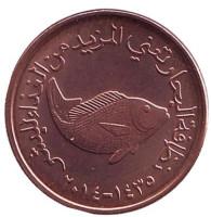 Рыба. Монета 5 филсов. 2014 год, ОАЭ.