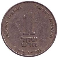 Монета 1 новый шекель. 1985 год, Израиль.