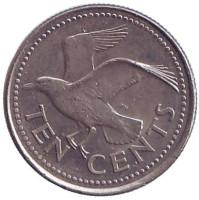 Чайка. Монета 10 центов. 2000 год, Барбадос.