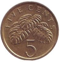 Монстера деликатесная. Монета 5 центов. 1985 год, Сингапур.