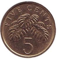 Монстера деликатесная. Монета 5 центов. 2010 год, Сингапур.