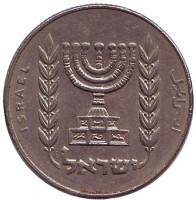 Менора (Семисвечник). Монета 1/2 лиры. 1978 год, Израиль.