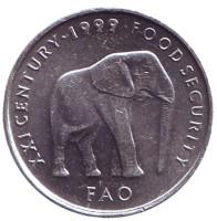 ФАО. Слон. Монета 5 шиллингов. 1999 год, Сомали.