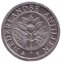 Цветок апельсинового дерева. Монета 1 цент. 2005 год, Нидерландские Антильские острова.