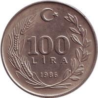 Монета 100 лир. 1986 год, Турция.