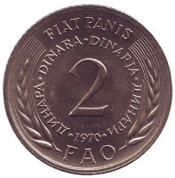 ФАО. Продовольственная программа. Монета 2 динара. 1970 год, Югославия.