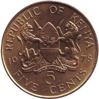 Монета 5 центов. 1978 год, Кения. (бюст влево). UNC.