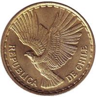 Кондор. Монета 10 чентезимо. 1969 год, Чили. aUNC.