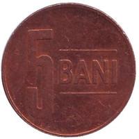 Монета 5 бани. 2011 год, Румыния.