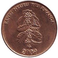 Цветок кофейного дерева. Монета 5 франков. 2009 год, Руанда.