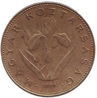 Венгерский ирис. Монета 20 форинтов. 1994 год, Венгрия.