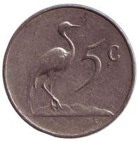 Африканская красавка. Монета 5 центов. 1967 год, Южная Африка. (Suid Afrika).