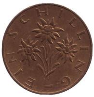 Эдельвейс. Монета 1 шиллинг. 1974 год, Австрия.