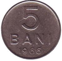 5 бани. 1966 год, Румыния.