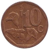 Лилия. Монета 10 центов. 1998 год, Южная Африка.