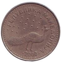 Павлин. Монета 10 денаров. 2008 год, Македония. Из обращения.