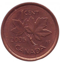Монета 1 цент, 2005 год, Канада. (Немагнитная).