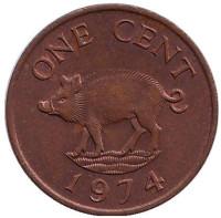 Поросенок. Монета 1 цент. 1974 год, Бермудские острова.