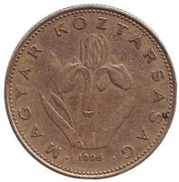 Венгерский ирис. Монета 20 форинтов. 1996 год, Венгрия.