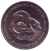 Кавказская выдра. Сохранение природы. Монета 100 драмов. 1997 год, Армения.