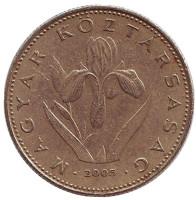 Венгерский ирис. Монета 20 форинтов. 2005 год, Венгрия.