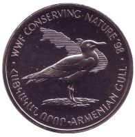 Армянская чайка. Сохранение природы. Монета 100 драмов. 1998 год, Армения.