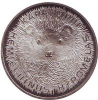 Длинноиглый ёж. Монета 50 тенге, 2013 год, Казахстан.