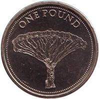 Драконово дерево. Монета 1 фунт. 2016 год, Гибралтар. UNC.