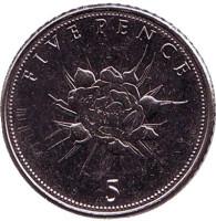 Цветок. Монета 5 пенсов. 2015 год, Гибралтар.