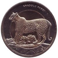 Леопард. Монета 1 лира, 2012 год, Турция.
