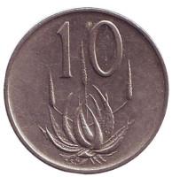 Алоэ. Монета 10 центов. 1971 год, Южная Африка.
