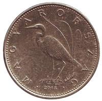 Большая белая цапля. Монета 5 форинтов. 2015 год, Венгрия.