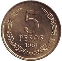 Монета 5 песо. 1981 год, Чили.