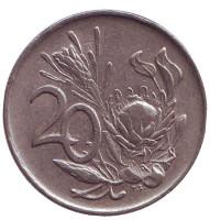 Цветок протея. Монета 20 центов. 1971 год, ЮАР.