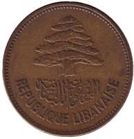 Кедр. Монета 25 пиастров. 1952 год. Ливан.
