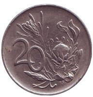 Цветок протея. Монета 20 центов. 1974 год, ЮАР.