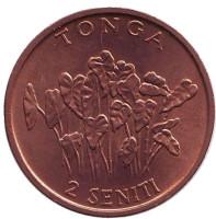 Растение. Монета 2 сенити. 1981 год, Тонга.
