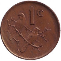 Воробьи. Монета 1 цент. 1983 год, ЮАР.